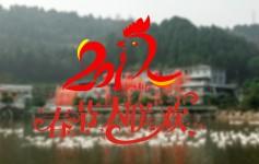 微纪录:拱市春节大联欢